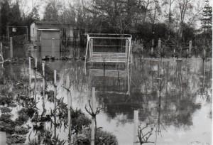 Hochwasser CR KGV Gärtendreieck e.V.